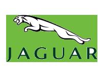 doi-tac-jaguar